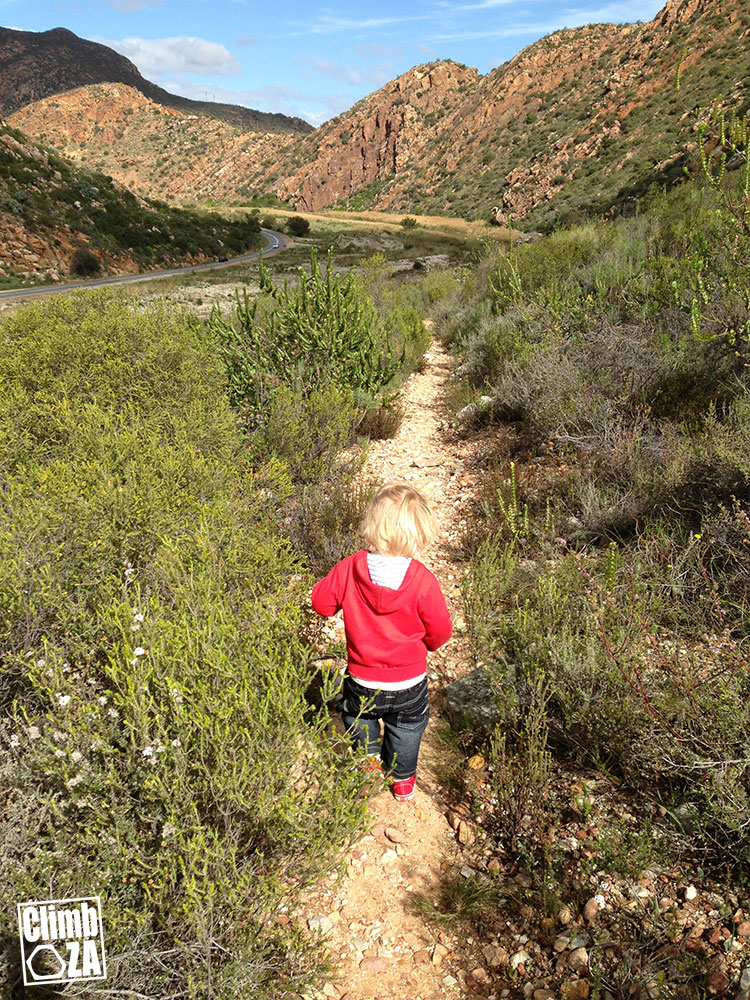 Montagu Hiking Trails - Walking backward along the Cogmanskloof Trail with the Steeple crag in view in the background